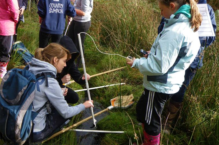 Field Studies (GCSE & A-Level)