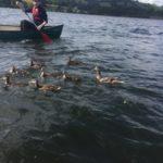 Harrogate Grammar School Canoe Expeditionv